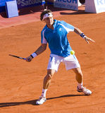 David Ferrer in action Royalty Free Stock Image