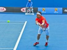 David Ferrer bawić się w australianie open Zdjęcie Stock