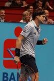 David Ferrer (EN PARTICULIER) Image stock