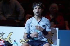 David Ferrer (ESP) Imagem de Stock