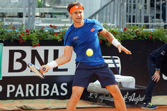 David Ferrer (ESP) Royalty Free Stock Photo