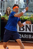 David Ferrer (ESP) Royalty Free Stock Images