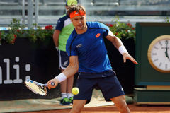 David Ferrer (ESP) Stock Photography