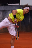 David Ferrer (ESP) Royalty Free Stock Image