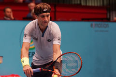 David Ferrer (ESP) Royalty Free Stock Photos