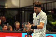 David Ferrer (ESP) Stock Photos