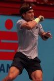 David Ferrer (ESP) Stock Photo