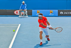 David Ferrer playing in the Australian Open Royalty Free Stock Photo