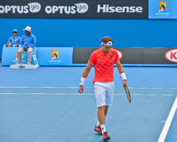 David Ferrer playing in the Australian Open Stock Photo