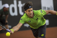 David Ferrer Royalty Free Stock Photography