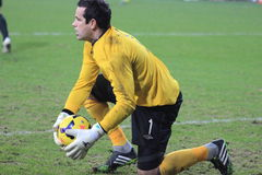 David Forde Royalty Free Stock Photo