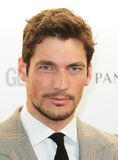 David Gandy Stock Images