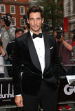 David Gandy Royalty Free Stock Image