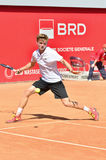 David Goffin Stock Photography