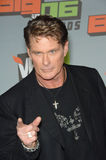 David Hasselhoff Royalty Free Stock Images