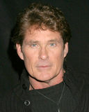 David Hasselhoff Stock Images