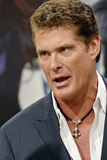 David Hasselhoff appearing live. David Hasselhoff at the Arden B Fashion Show in Los Angeles stock photo