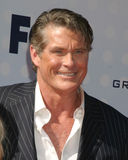 David Hasselhoff Images stock