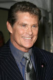 David Hasselhoff Royalty Free Stock Photography