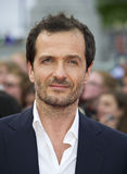 David Heyman Stock Photos