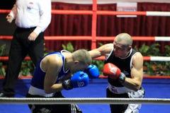 David Hunayan and Stanislav Starek - boxing Royalty Free Stock Photo