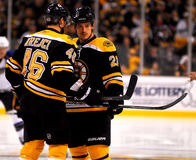 David Krejci and Andrew Ference Boston Bruins Stock Photos