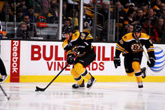 David Krejci Boston Bruins Stock Photography