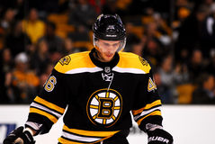 David Krejci Boston Bruins Royalty Free Stock Photos