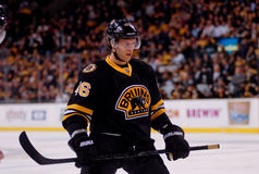 David Krejci Boston Bruins Stock Photo