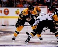 David Krejci, Boston Bruins Stock Photography