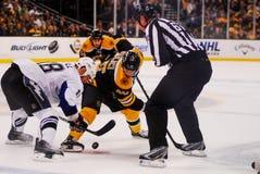 David Krejci, Boston Bruins Royalty Free Stock Photo