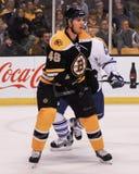 David Krejci, Boston Bruins Royalty Free Stock Images