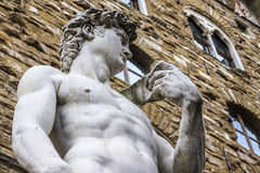 The David of Michelangelo Royalty Free Stock Image