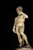 David by Michelangelo, Florence. Michelangelo's David copy by night, Florence Stock Photography