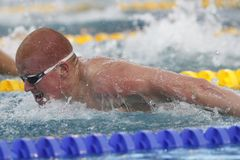 David Morgan Coupe Du Monde pływanie àChartres Fotografia Stock