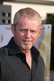 david morse Royaltyfria Foton