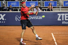 David Nalbandian Royalty Free Stock Image