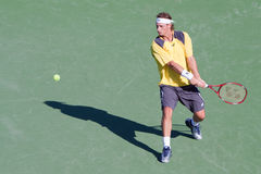 David Nalbandian bij 2010 BNP Open Paribas Stock Foto's