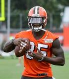 David Njoku Rookie NFL Cleveland Browns 2017 Fotografering för Bildbyråer