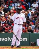 David Ortiz Boston Red Sox royalty free stock images