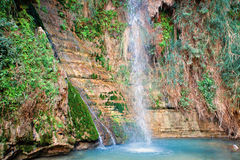David's waterfall at Ein Gedi Nature Reserve. Near Dead Sea, Izrael royalty free stock images