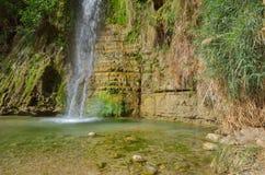 David's Waterfall. En Gedi Nature Reserve, Israel Stock Images