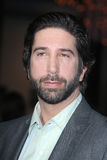 David Schwimmer Stock Images