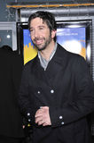 David Schwimmer Royalty Free Stock Images