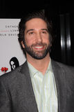 David Schwimmer Stock Image