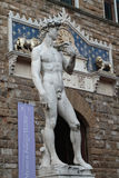 David statue by Michelangelo Royalty Free Stock Photos