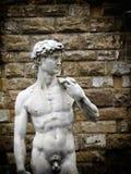 David statue Stock Photos