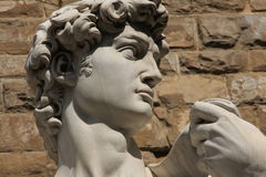 david staty arkivfoton