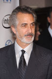 David Strathairn Royalty Free Stock Photos