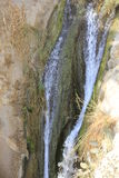 David Stream Water Fall in Ein Gedi, Judea Desert in the Holy Land, Israel Stock Image